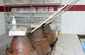 מפעל לייצור מי ורדים בעיר כאשאן באיראן | ויקיפדיה